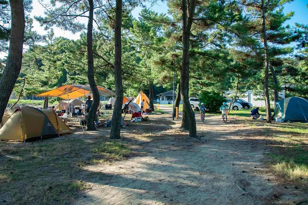 エコフィールド松原ファミリーキャンプサイト